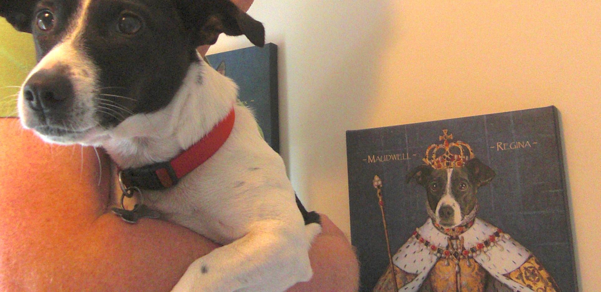 queen_dog_portrait