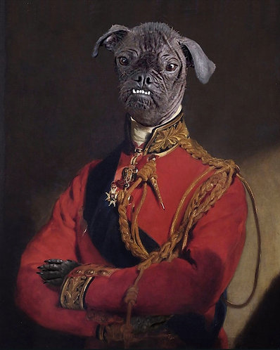 Duke of Wellington Portrait of Your/Friends/Family Pet gallery wrap