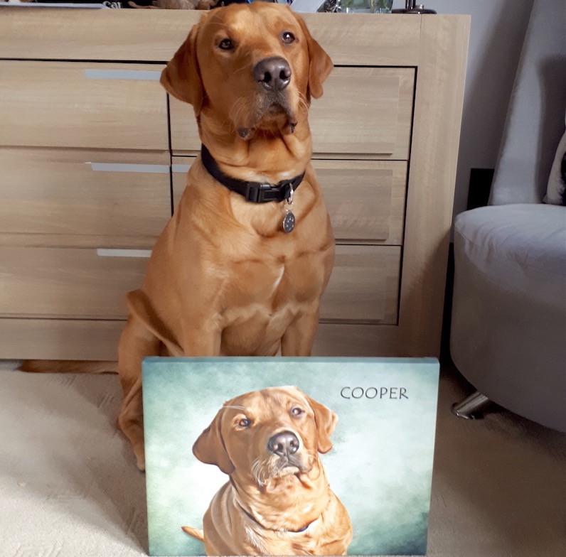 Cooper_dog_portrait