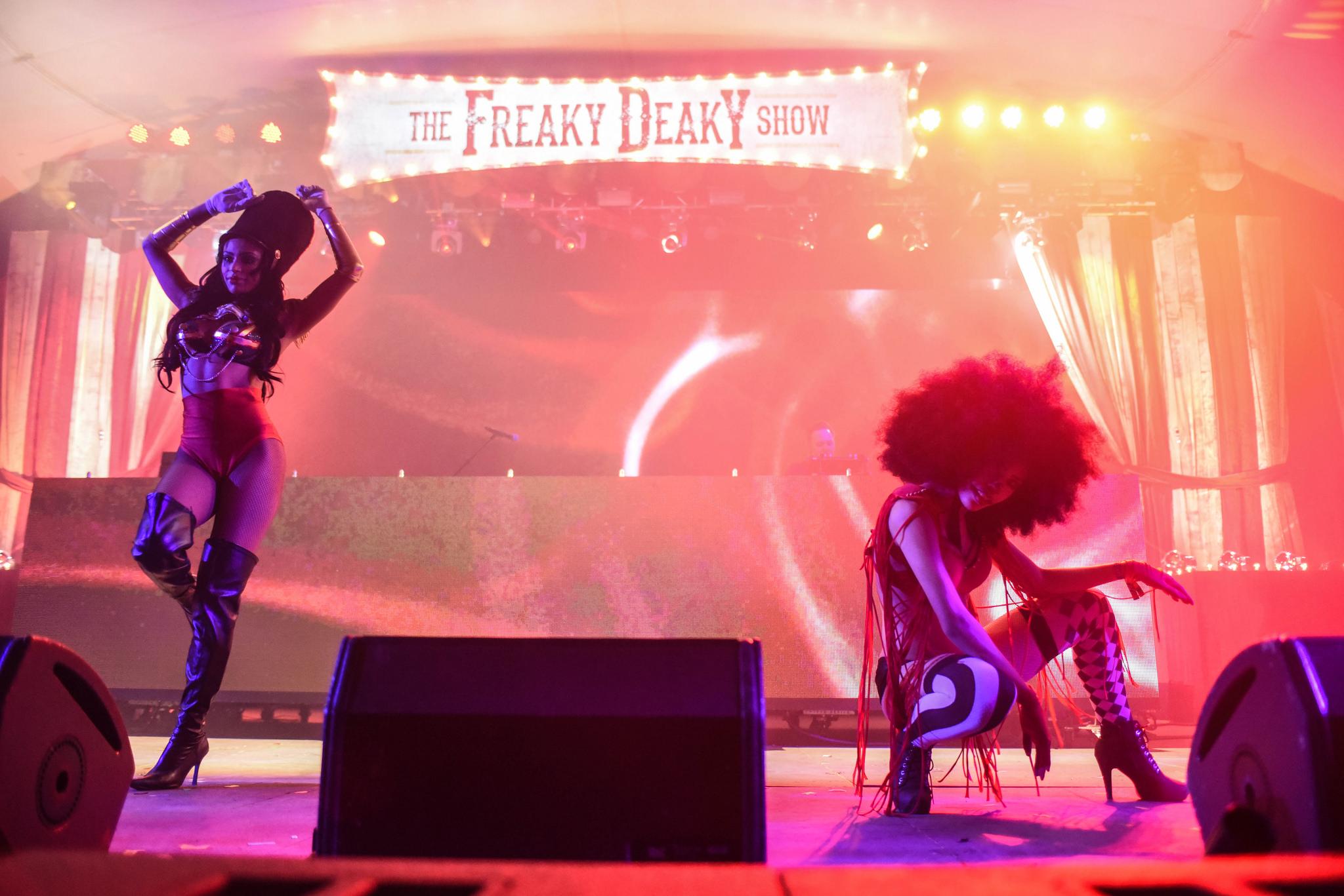 Freaky Deaky Music Festival