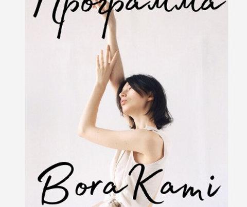Программа BoraKami