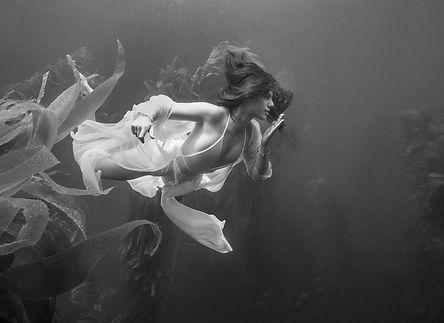 Kelp Nymph