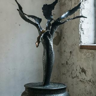 My Flower - Sergii Shaulis - JM Art Mana