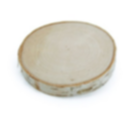 birch rounds.PNG