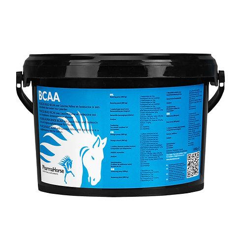 BCAA - לסוס