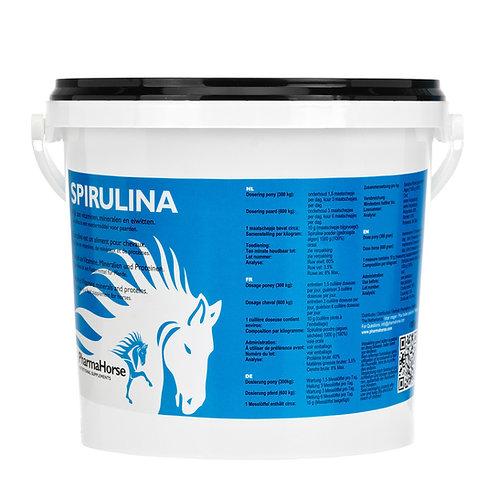 Spirulina - ספירולינה לסוס