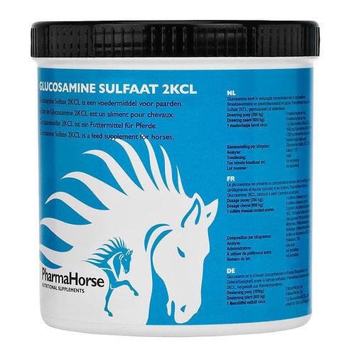 Glucosamine horse - גלוקוזמין