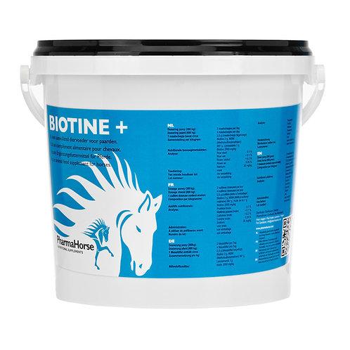 Biotin - ביוטין לסוס
