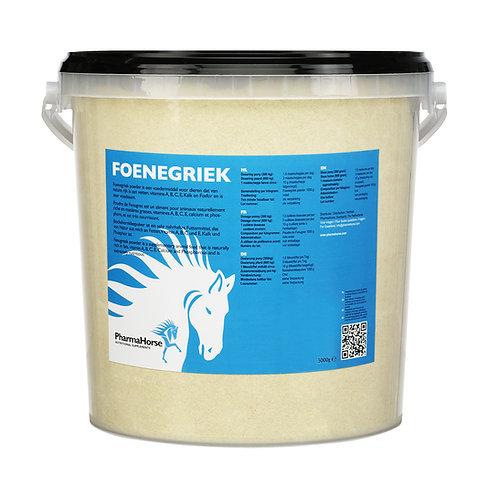 Foenegriek - חילבה לסוס