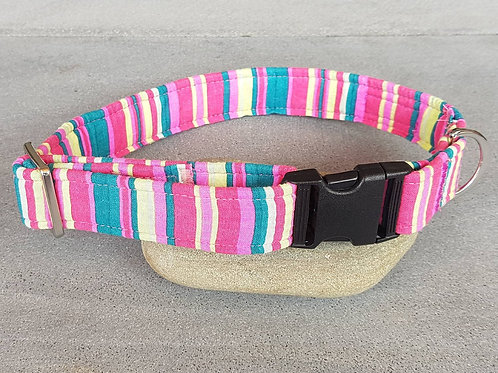 Lollipop Dog Collar