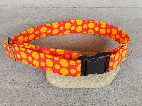 Ciccio Dog Collar