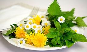 herbs-5140754_640.jpg