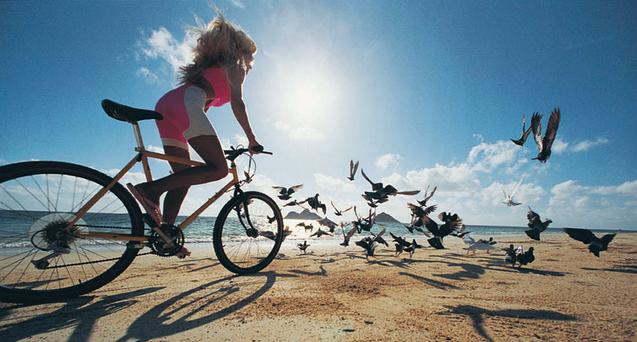 велопрогулки4