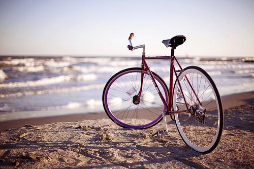 велопрогулки5