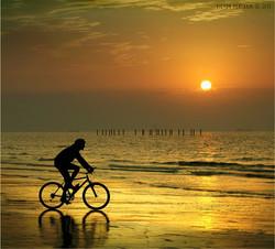 велопрогулки3