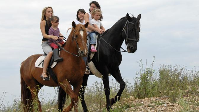 конные прогулки3