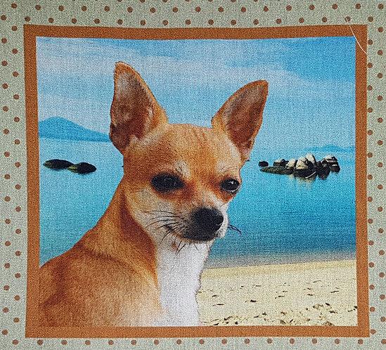 Tecido Cachorrinho Chihuahua - Diversos Modelos