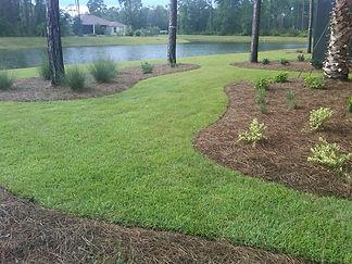 New sod installation