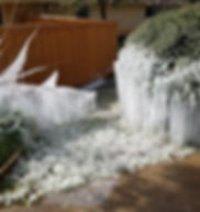 Sprinklers left running during a freeze causing winter wonderlad