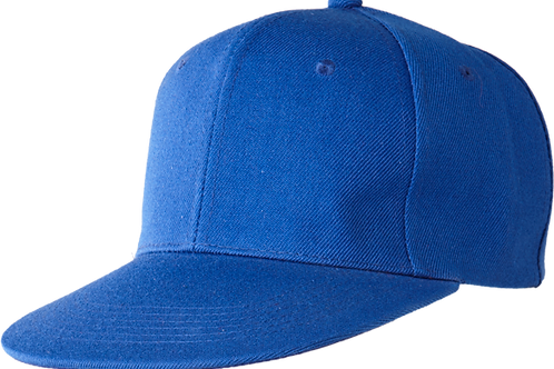 SNAPBACK (ROYAL BLUE)