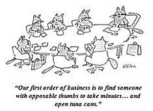 Setting the meeting agenda