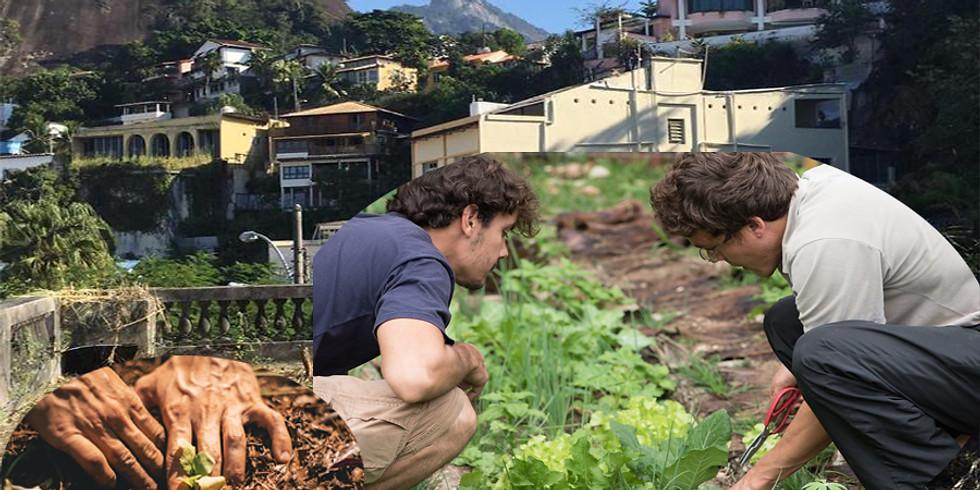 NOV 2019 - HORTA em TERRAÇOS - Agrofloresta nas Alturas