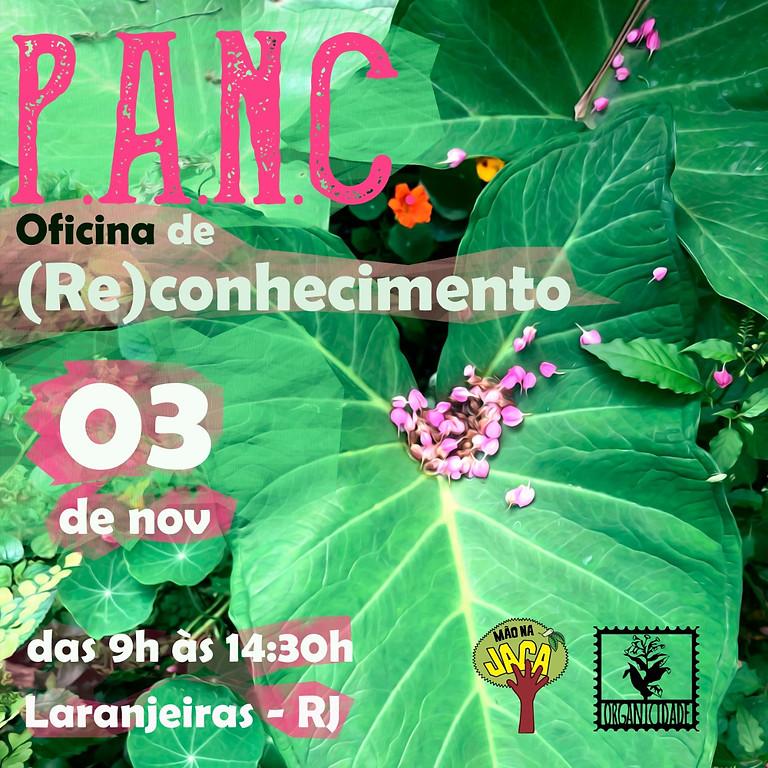 NOV 2019 - PANC - Oficina de (RE)CONHECIMENTO