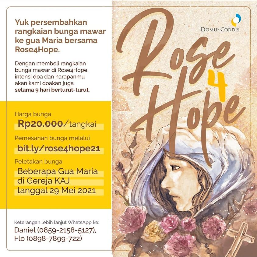 Rose for Hope