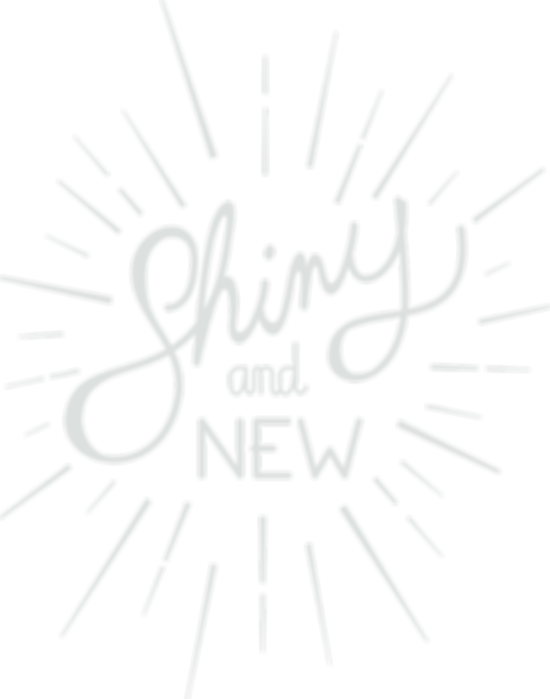 shiny and new.png