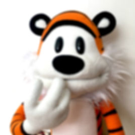 Hobbes Calvin & Hobbes