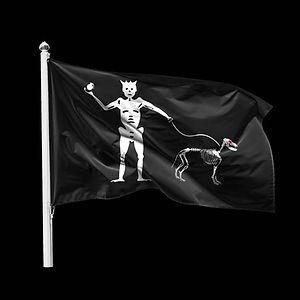 Duco Flag.JPG