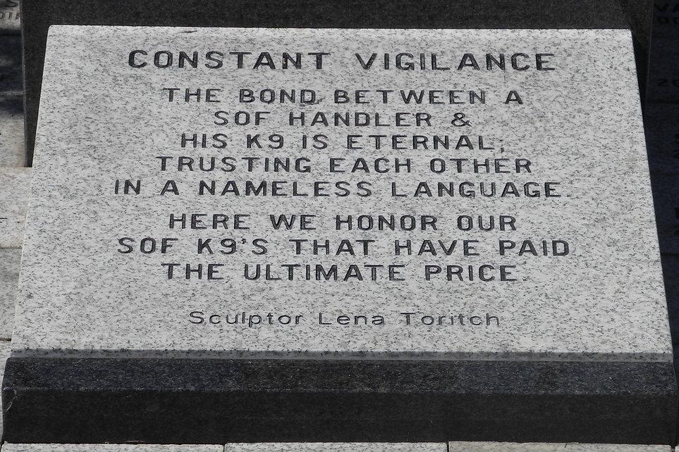 Constant Vigilance HD.jpg