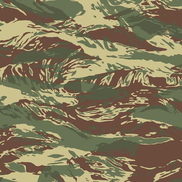 Rhodesian-Tiger-Stripe-22-Camo-thumb.jpg
