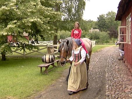 Tributo a la Dinamarca rural