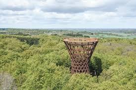 Forest tower, belleza en espiral