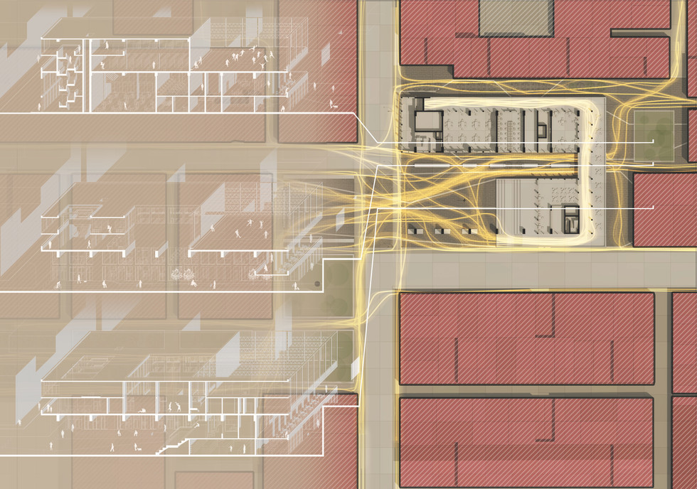 Perspective Sections + Circulation Paths