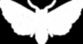 LEViT∆TE logo