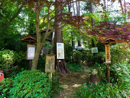 鎌田鳥山はぼちぼち営業を再開しています。カフェも6月16日から火曜水曜営業始めます。峠の小さな美術館もオープンしています。