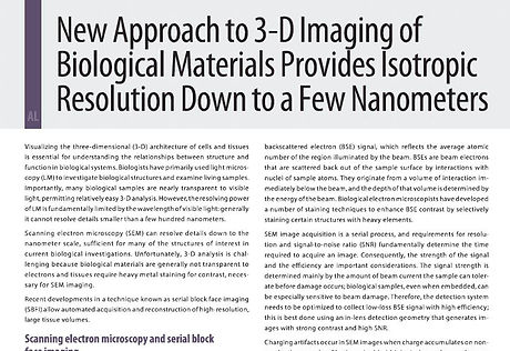 Contributed Article 3D Imaging Biologica