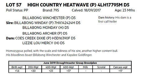 Lot 57 Heatwave details.jpg