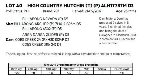 Lot 40 Hutchin details.jpg