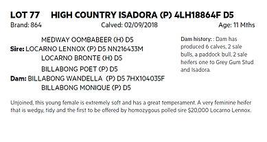 Lot 77 Isadora.jpg