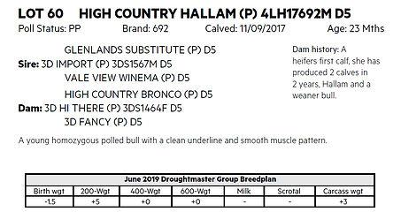 Lot 60 Hallam details.jpg