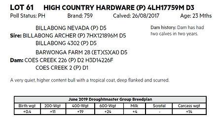 Lot 61 Hardware details.jpg