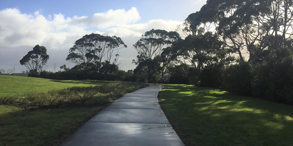 Te Whau Pathway Open Day