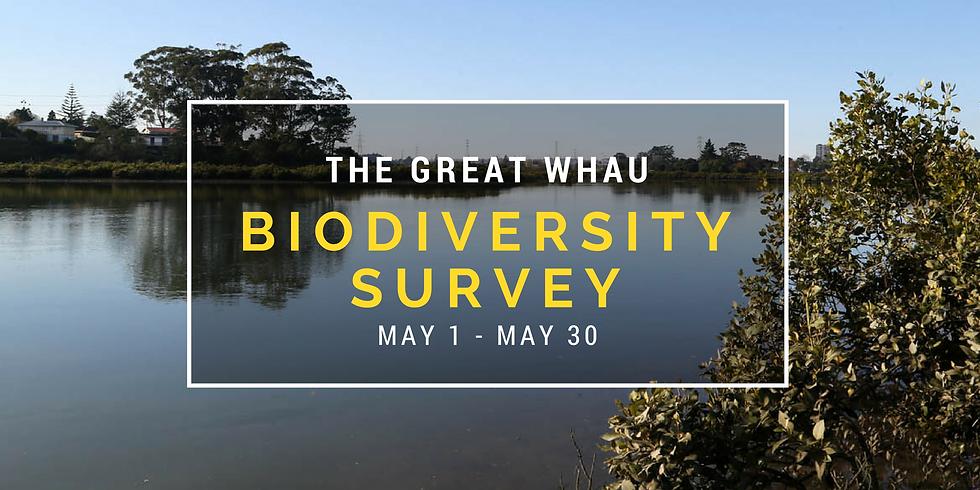 The Great Whau Biodiversity Survey