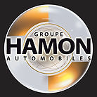 Groupe Hamon Automobiles.jpeg