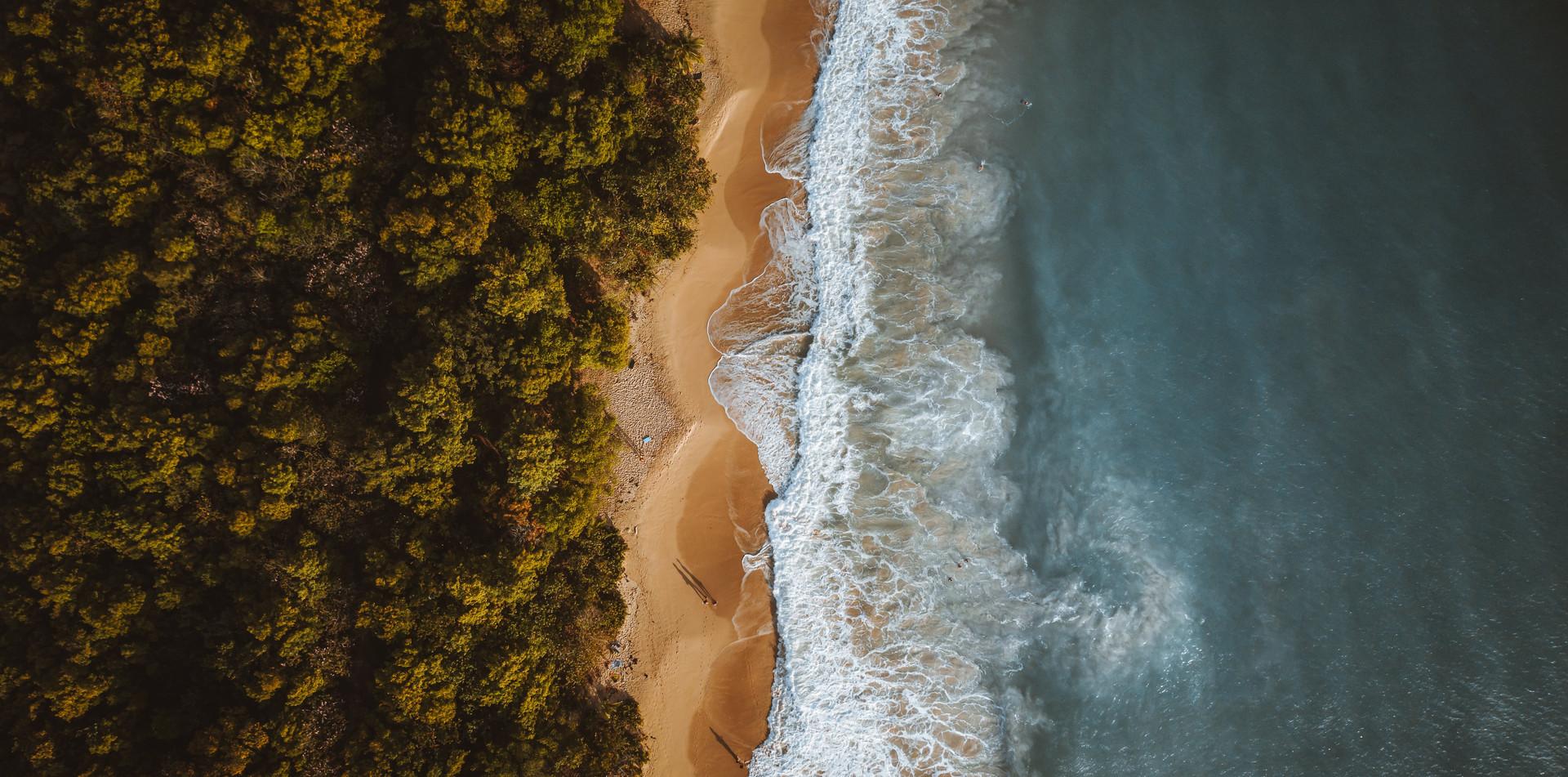 Grande Anse des Salines .jpg