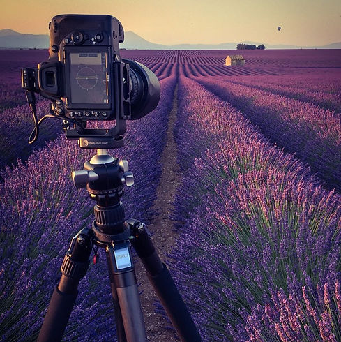 Provence Lavender in Valensole Photo of my Nikon camera