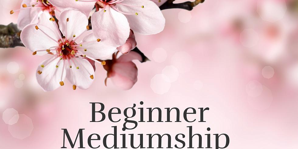 Beginner Mediumship Workshop